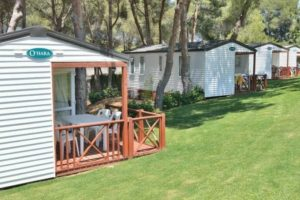 revenue management para campings